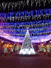 Photo: 街はもうクリスマス トレッサ横浜