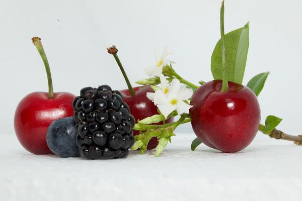 frutti rossi di michelabernardiphotos