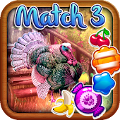 Match 3 - Turkey Trot