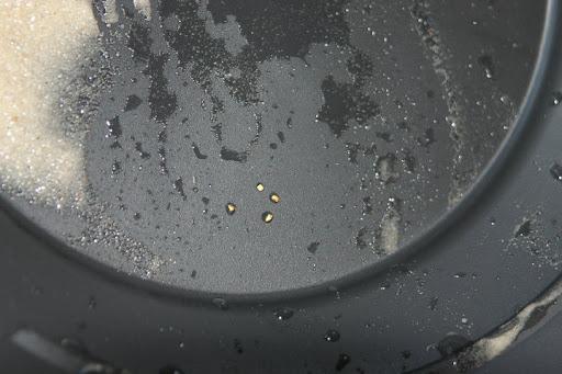 pepitas oro en batea