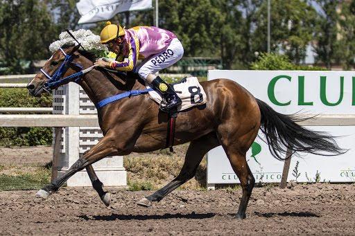 Mujer Del Cesar (Caesarion) se adjudica Handicap (1000m-Arena-CHS). - Staff ElTurf.com