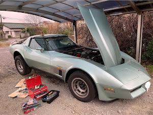 のカスタム事例画像 427vetteさんの2020年03月14日11:45の投稿