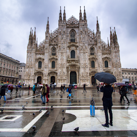 Milano (Italy) by Gianluca Presto - City,  Street & Park  Street Scenes ( rain, reflection, city, umbrella, street, church, milano, umbrellas, people, italy, cathedral, architecture,  )