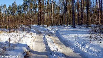 Photo: Лесной автобан