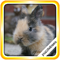 Jigsaw Puzzles: Bunnies icon