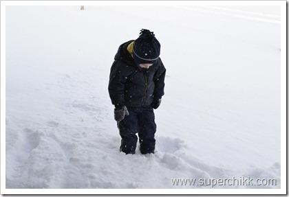 029 Snow Days, February 2011