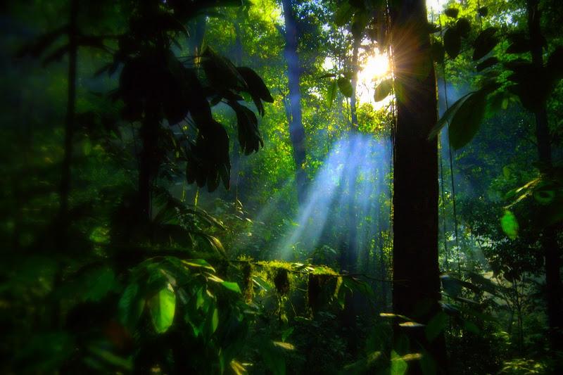 LUCE...Lo bel pianeta che d'amor conforta: Venere di fabryfoto