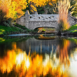 Yellow by Brian Hollars - City,  Street & Park  City Parks ( fall autumn leaves bridge stones yellow water )