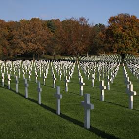 American cemetery by Oleksii Liebiediev - City,  Street & Park  Cemeteries ( army, elsas, cemetery, war cemetery, france, war )