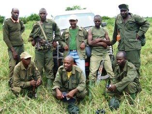 hippos Queen Elizabeth National Park