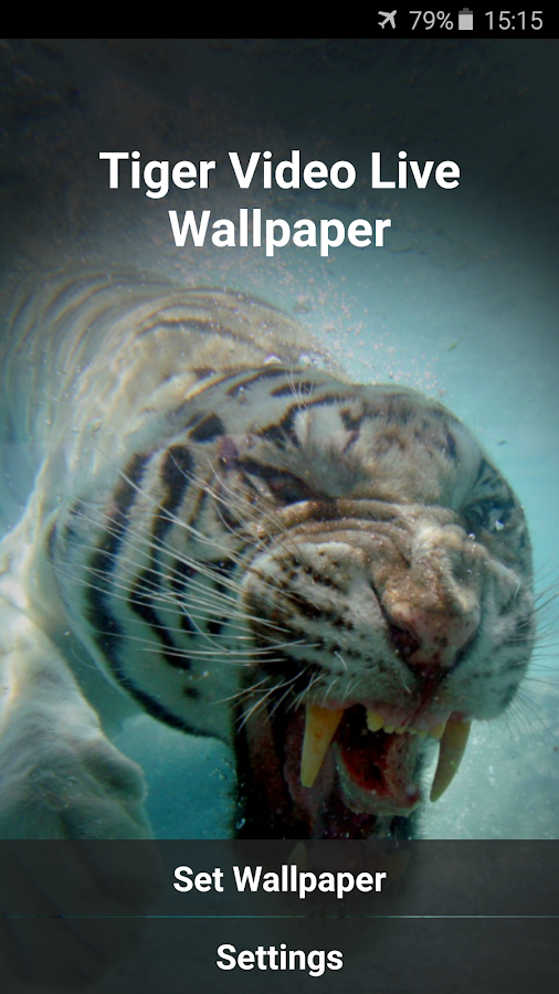 tiger video live wallpaper android apps on google play
