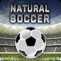 Natural Soccer - Fun Arcade Football Game icon