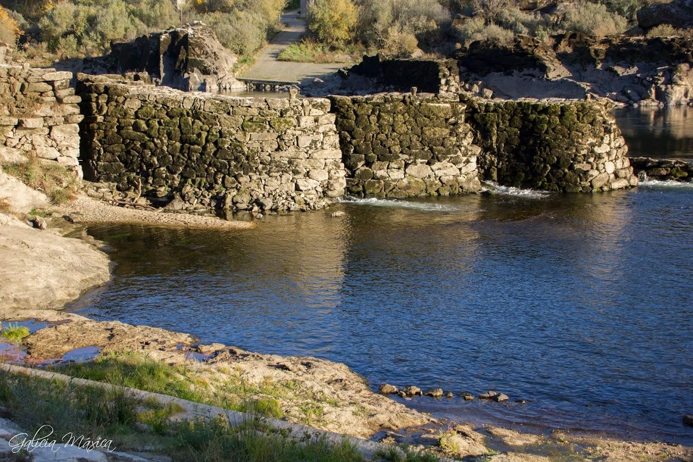 Pesqueiras en Arbo
