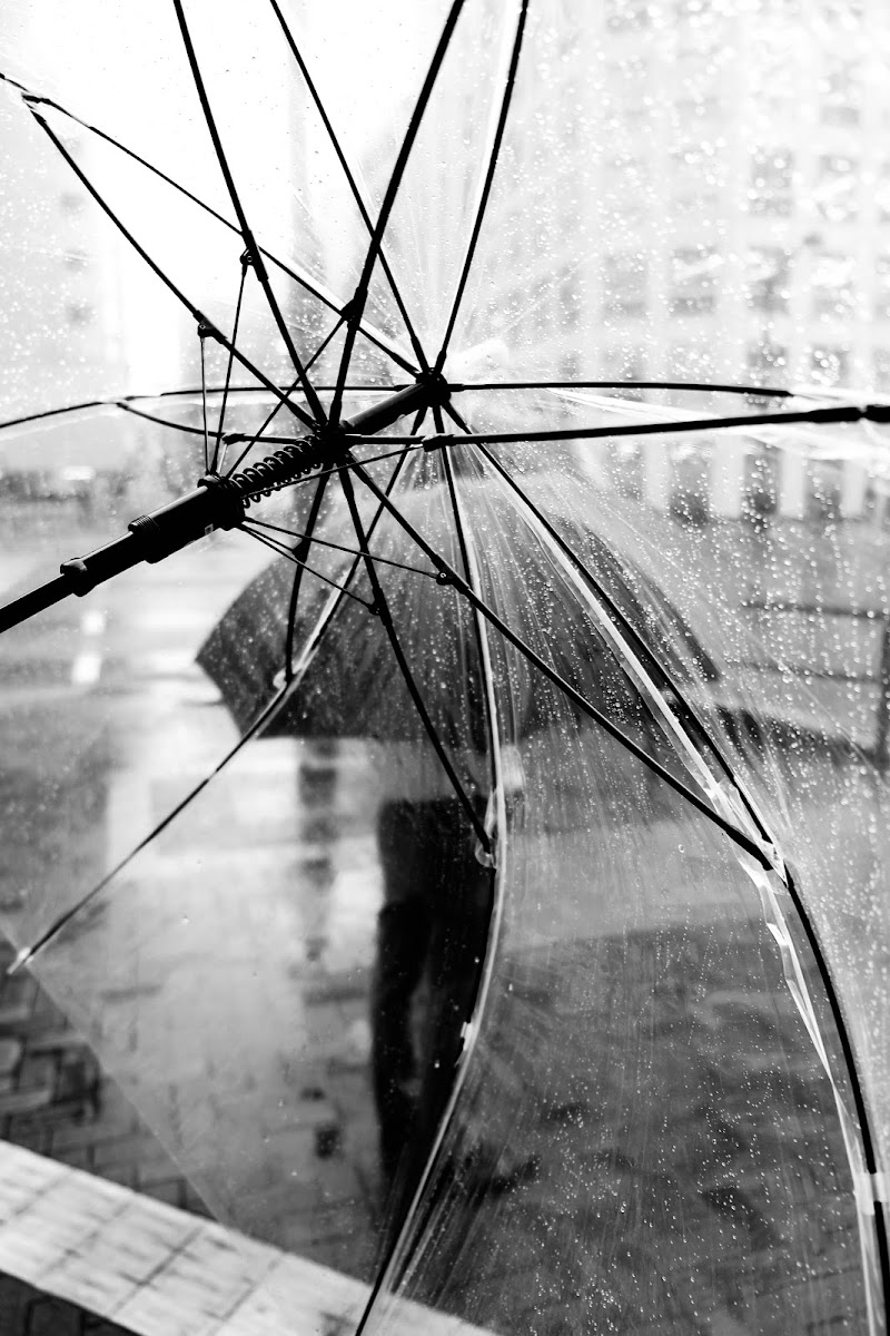 Through The Umbrella di claudio1984