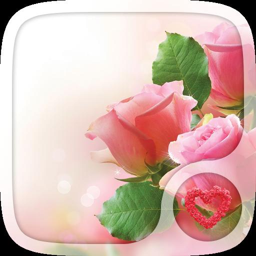Pink rose Love Wallpapers