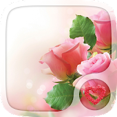 Pink rose Love Wallpapers
