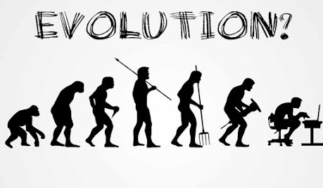 Evolution-website-neuromarketing-germangorriz