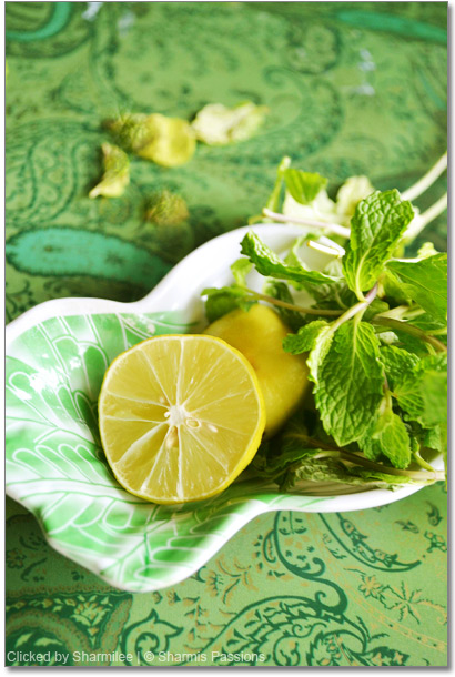 Lime Mint Cooler Recipe
