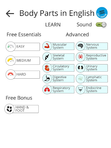 教育必備免費app推薦|英語のボディパーツ線上免付費app下載|3C達人阿輝的APP