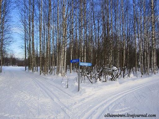 На перекрестках лыжни стоят столбы с наименованием населенного пункта и расстоянием до него