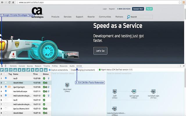 CA SV/App Test Chrome Extension