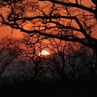 tramonto nel Kruger di