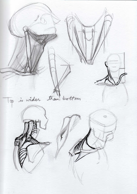 "Spartan Camp #177 - 50 gestures + Optional ""Neck Study"""