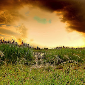 Pathway by Steven Butler - Landscapes Cloud Formations ( field, hdr, pathway, dam, lake, waterway )