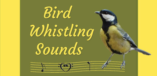 Bird Whistling Sounds - Apps on Google Play