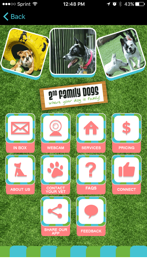 2nd Family Dogs- screenshot