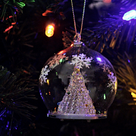 Christmas Ornament #3 by Tony Huffaker - Public Holidays Christmas ( ornament, reflection, light, tree, christmas )
