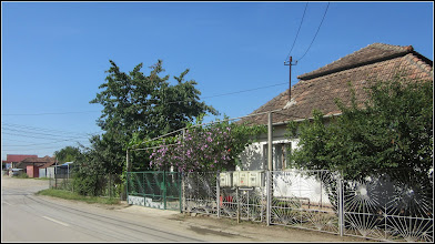 Photo: Str. Haţegului - 2017.07.10