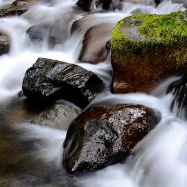 Mountains creek... by Pavel Gorbachev - Nature Up Close Water ( water creek rocks summer fall )