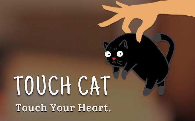 TouchCat