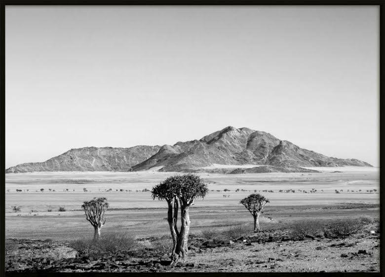 Desert, Poster