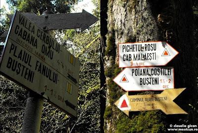 marcaje la intersecția TR cu Valea Cerbului