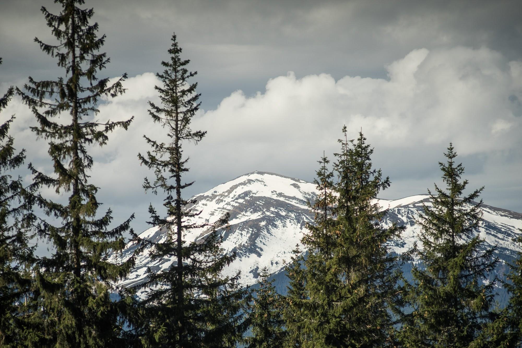 Засніжений Чорногірський хребет у травні