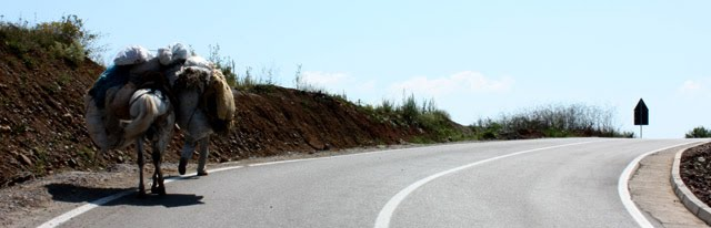Carretera de Voskopoje