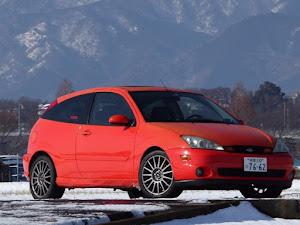 フォーカス (ハッチバック)  SVT Focus( U.S. Ford) 2004のカスタム事例画像 u1cobraさんの2018年01月23日21:01の投稿