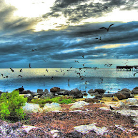 Fort Island Beach, Florida On The Gulf. by Terry Davey - Landscapes Travel ( beach )