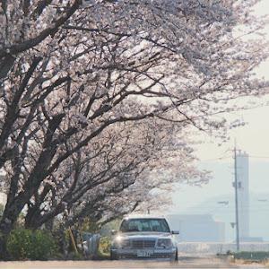 Eクラス ステーションワゴン W124 のカスタム事例画像 ブルマ大佐 specialists☆さんの2019年04月08日09:40の投稿