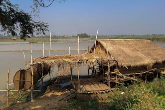 Photo: Biking south from Siem Reap, the jungle gradually gives way to rice paddies.