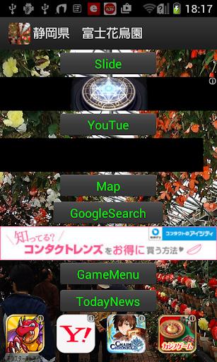 静岡県 花とフクロウ JP183