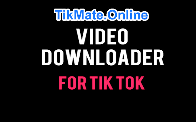 TikMate: Tik Tok Video Downloader