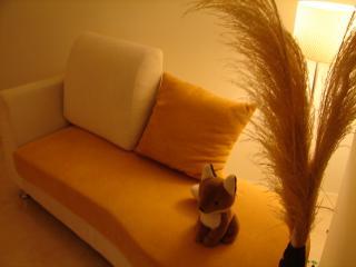 狐狸星球--南洋自然風雙人套房