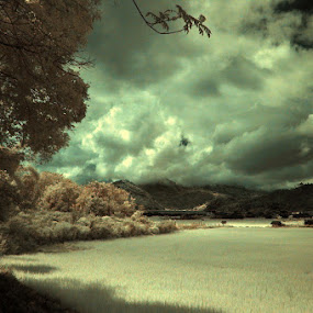 IR @ Takengon by Taufiqurrahman Setiawan - Landscapes Prairies, Meadows & Fields