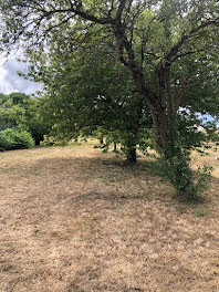 terrain à Souzay-Champigny (49)