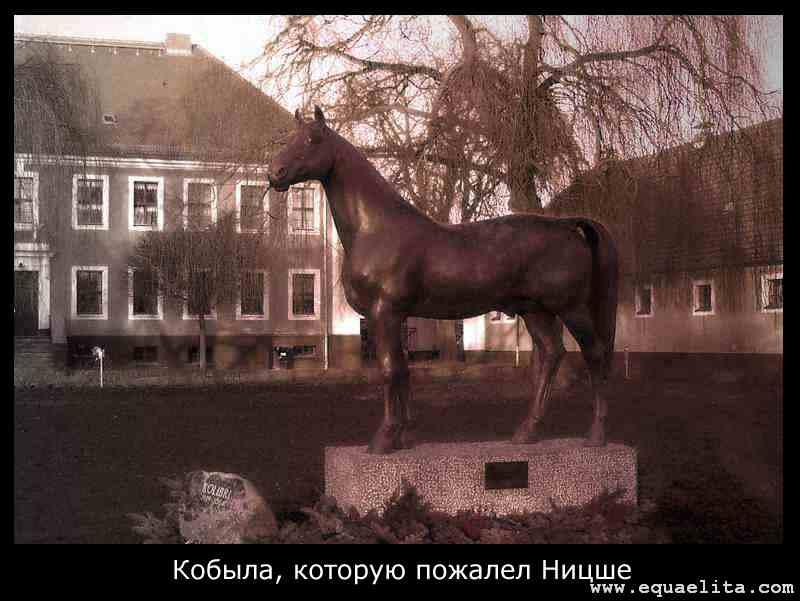 Памятник кобыле