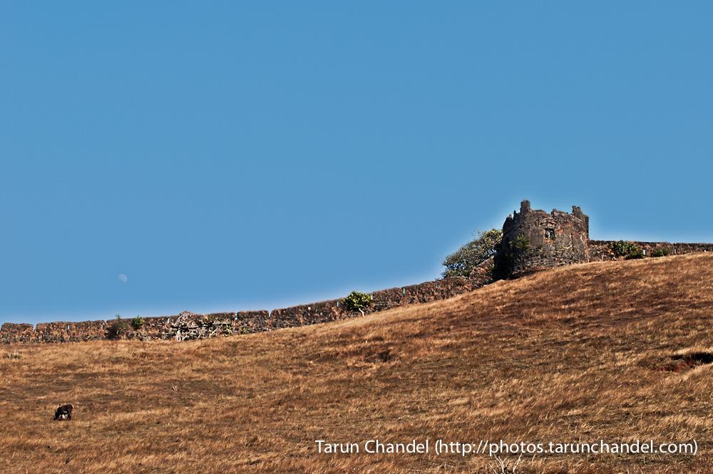 Korlai Fort, Tarun Chandel Photoblog