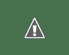 12 capolavori dal Museo d'Orsay